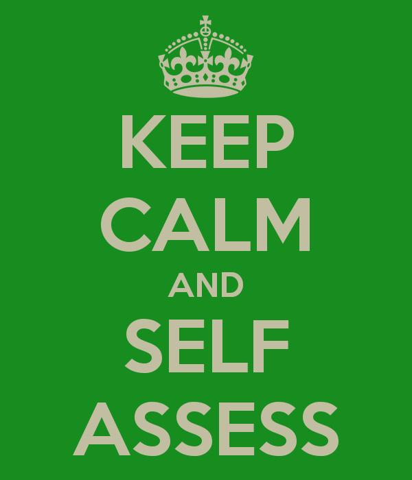 Do You SelfAssess – Self Assessment